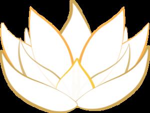 lotus, hartchakra, genezend